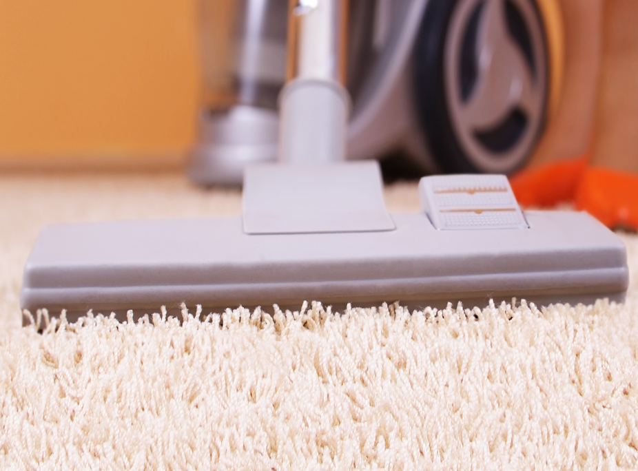 Eliminate The Hair Out Of Your Flooring Best Vacuum For Pets